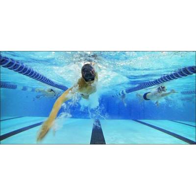Значение бассейна для жизни человека